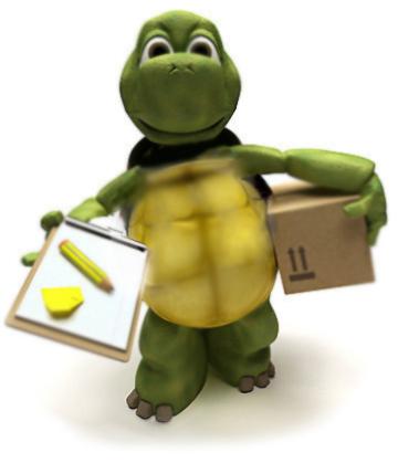 tortoise-delivering-parcel-2